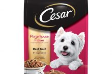 Hot New Pet Products $8.99 CESAR Small Breed Dry Dog Food Porterhouse Flavor and Spring Vegetables Garnish, 5 lb. Bag