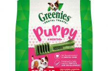 Hot New Pet Products $19.99 GREENIES Puppy 6+ Months Dental Dog Treats, 12 oz. Pack